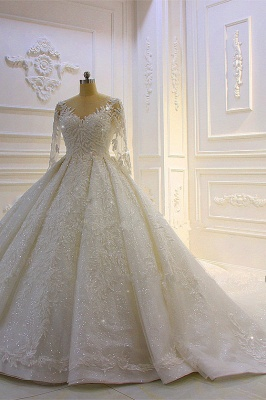 Hochzeitskleid Prinzessin Glitzer | Brautkleider Lange Ärmel_3